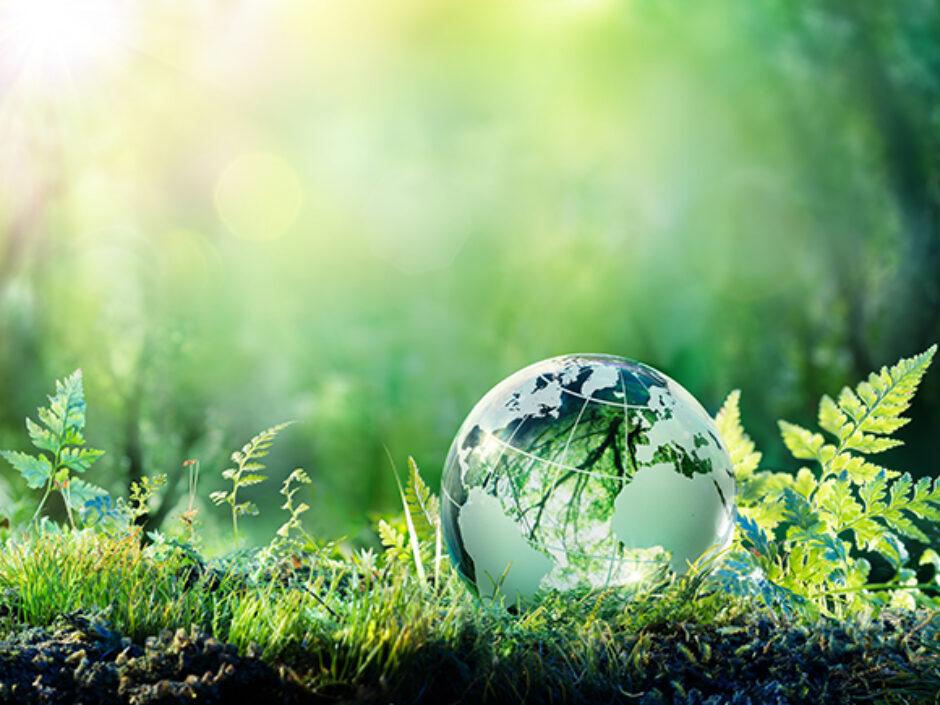 Der Weg ist das Ziel – die Kreissparkasse Limburg auf dem Weg zur Nachhaltigkeit