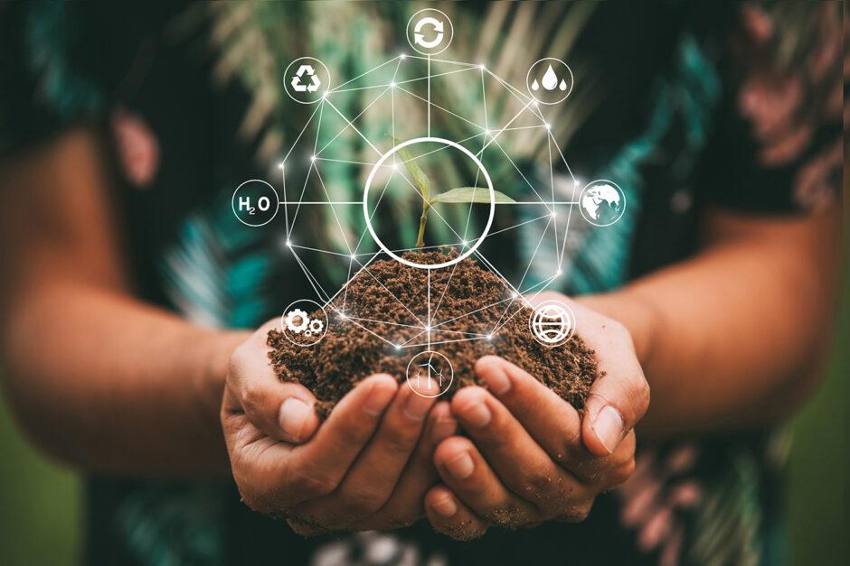 Gutes Gewissen, gute Rendite mit Nachhaltigkeit