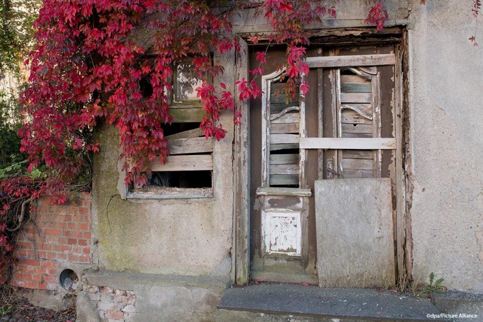 Wie und warum man ein Erbe ausschlägt